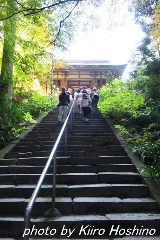 金剛輪寺、二天門前階段