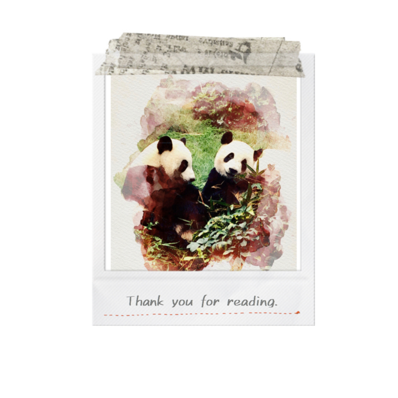 Thank you for readingのパンダ写真