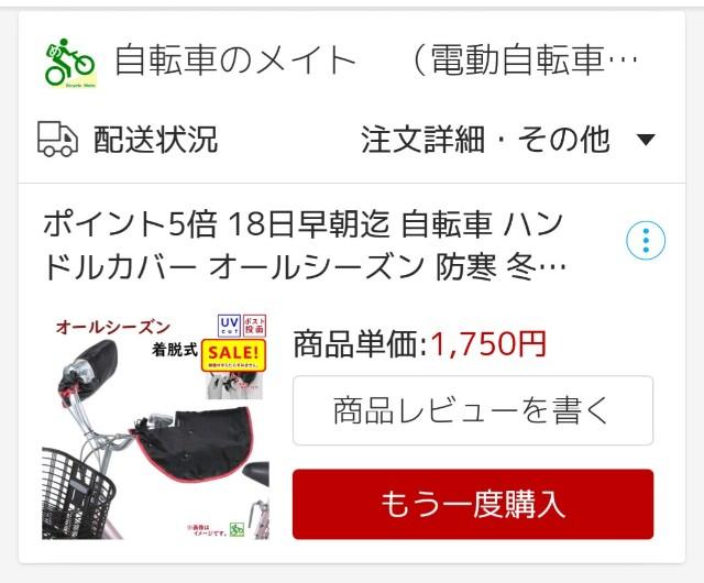 f:id:kijitora_miler:20190605212559j:plain