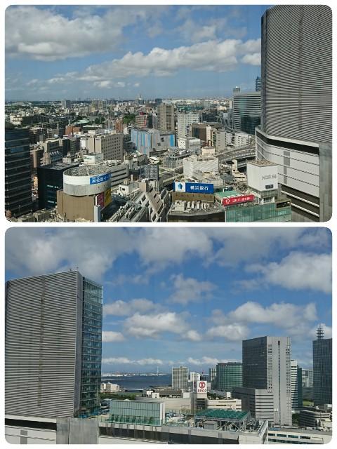 f:id:kijitora_miler:20190827224139j:plain