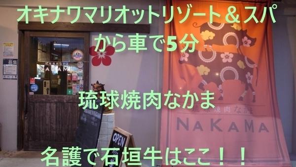 f:id:kijitora_miler:20191222200948j:plain