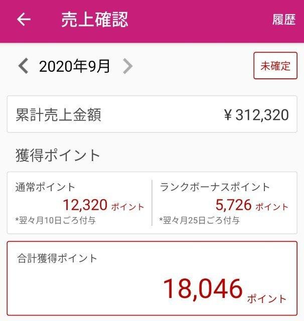 f:id:kijitora_miler:20200912211919j:plain