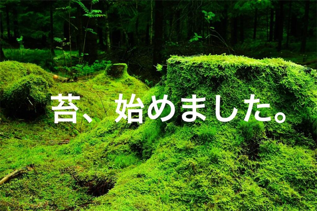 f:id:kijitoraneko-kuro:20171007094256j:image