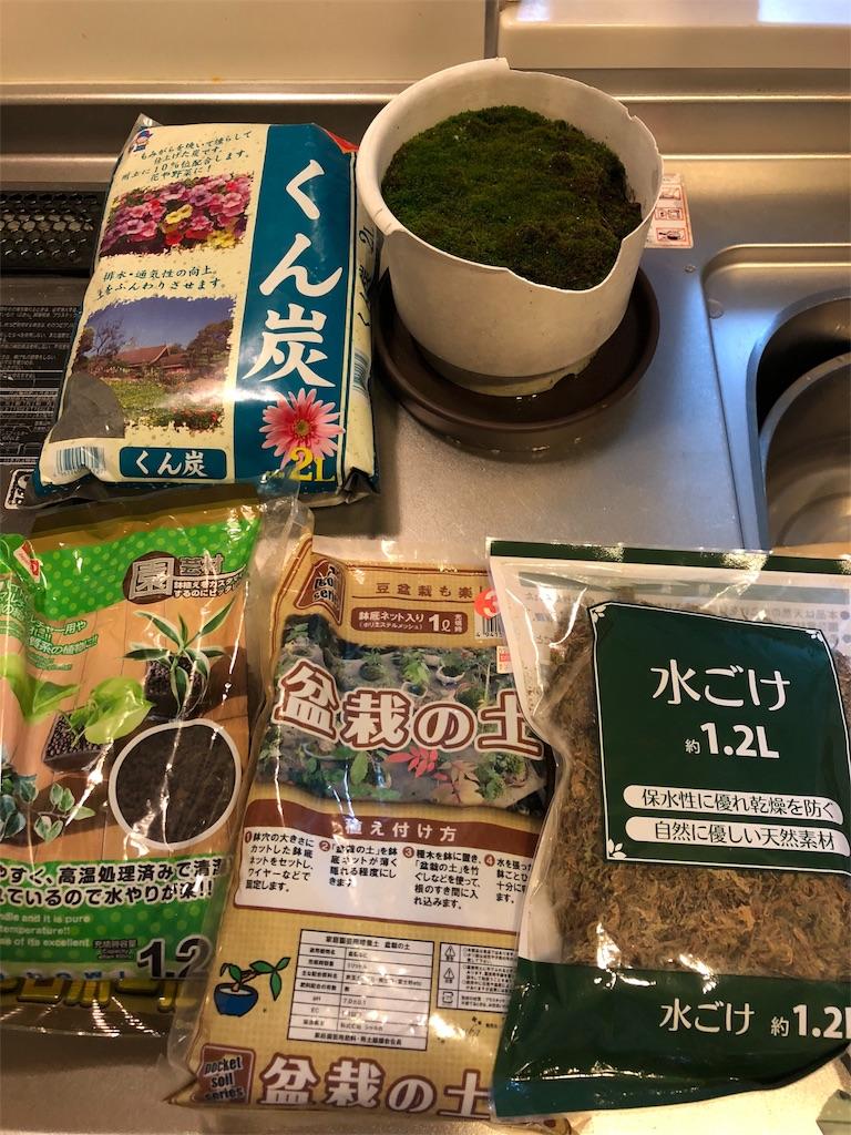 f:id:kijitoraneko-kuro:20171009200333j:image
