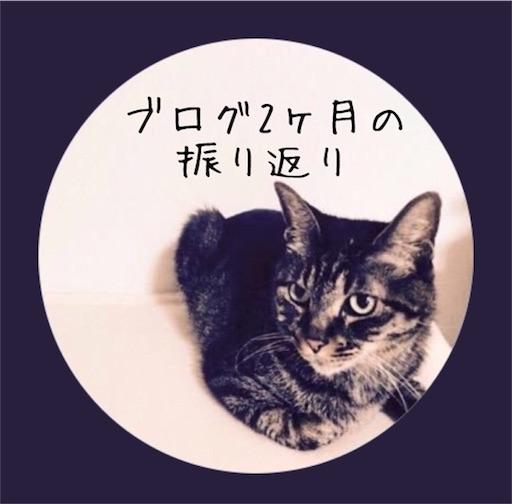 f:id:kijitoraneko-kuro:20171109113039j:image
