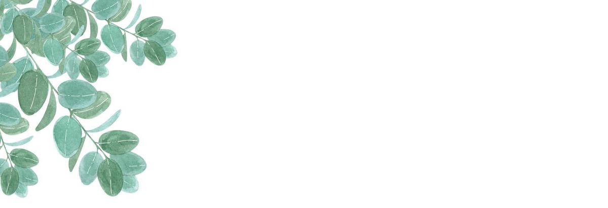 f:id:kika-treeflower:20210216105658j:plain