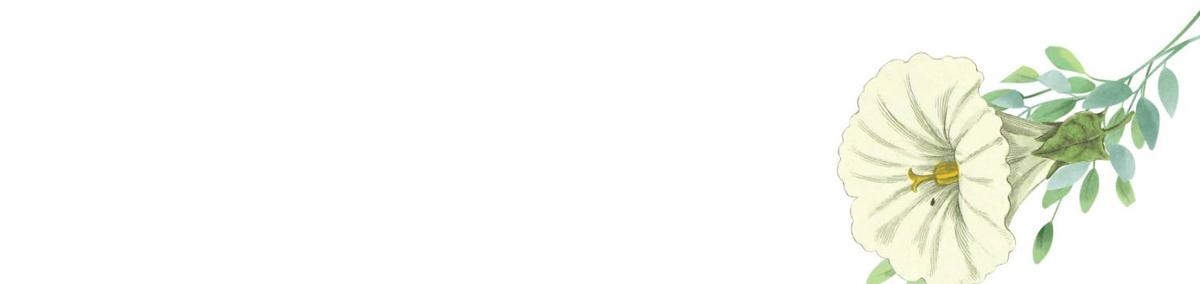 f:id:kika-treeflower:20210216152512j:plain
