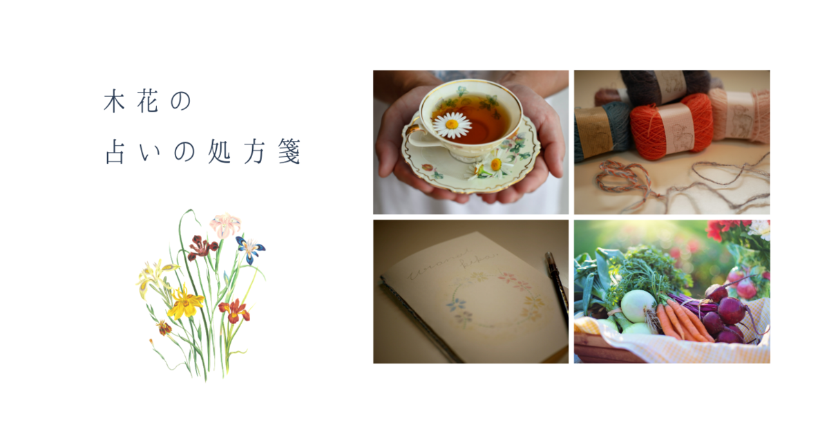 f:id:kika-treeflower:20210306202529p:plain