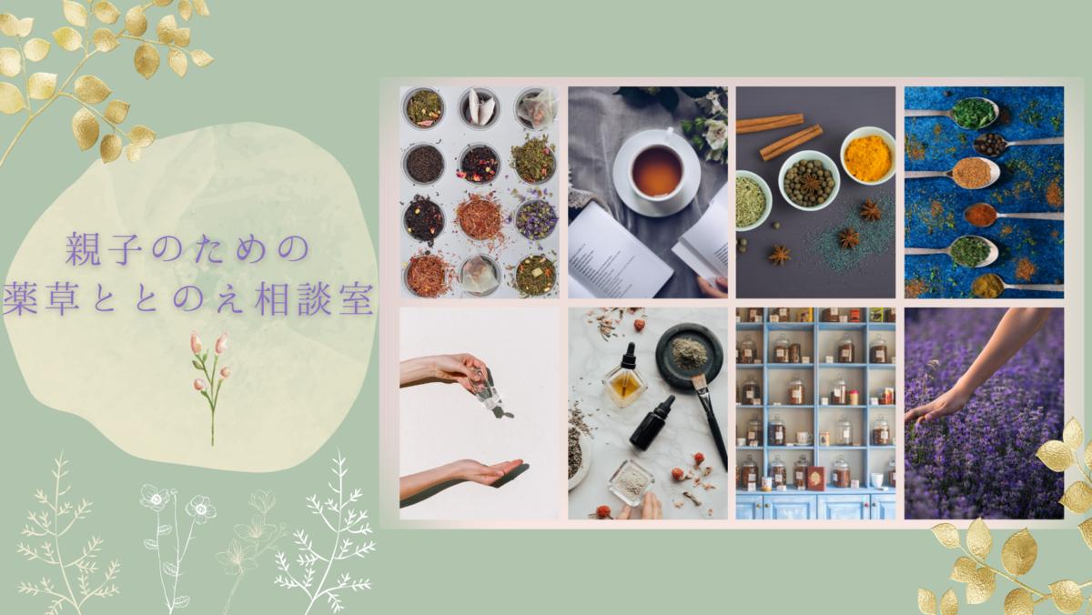 f:id:kika-treeflower:20210706073519p:plain