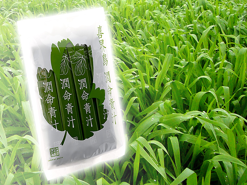 長命草(ボタンボウフウ)、大麦若葉、桑の葉配合 喜界島潤命青汁