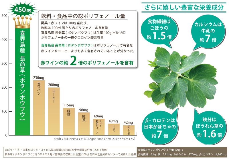喜界島 長命草(ボタンボウフウ) 栄養成分