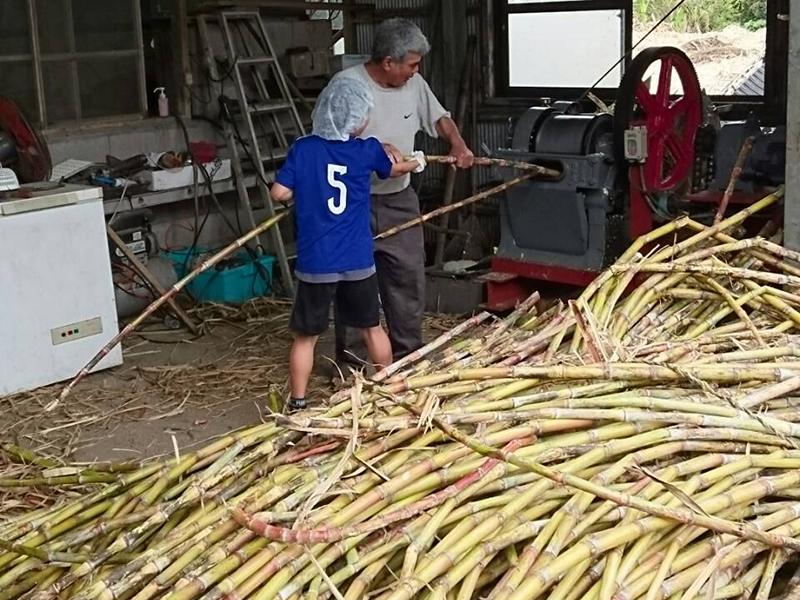 喜界島 黒糖 南村製糖