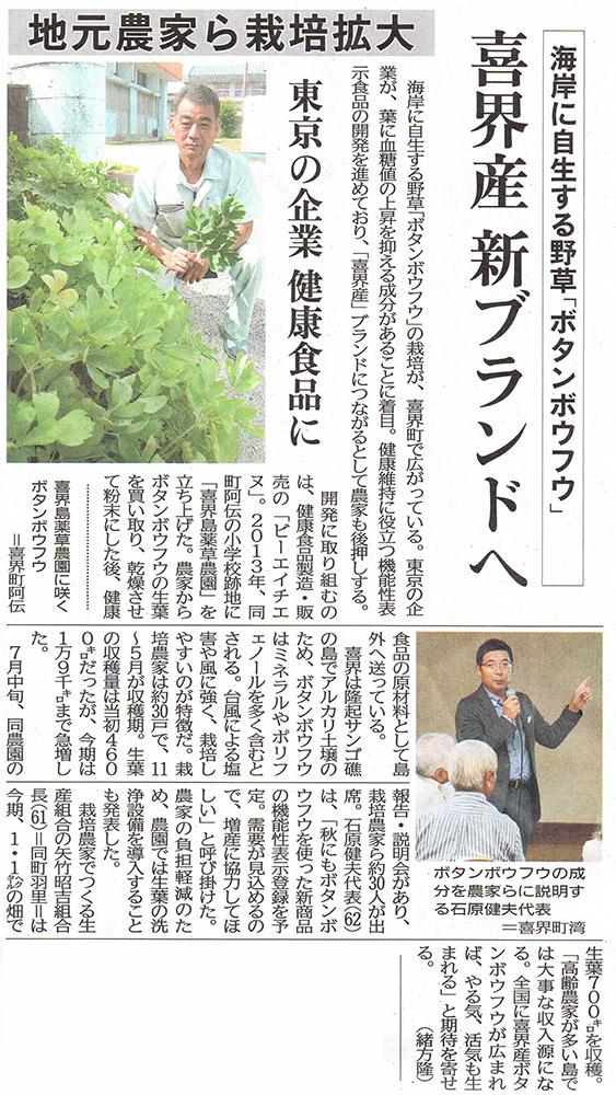 南日本新聞 喜界島薬草農園取材 ボタンボウフウ 長命草