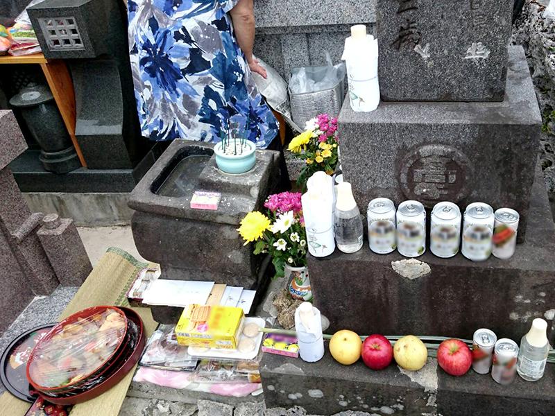 喜界島 シバサシ