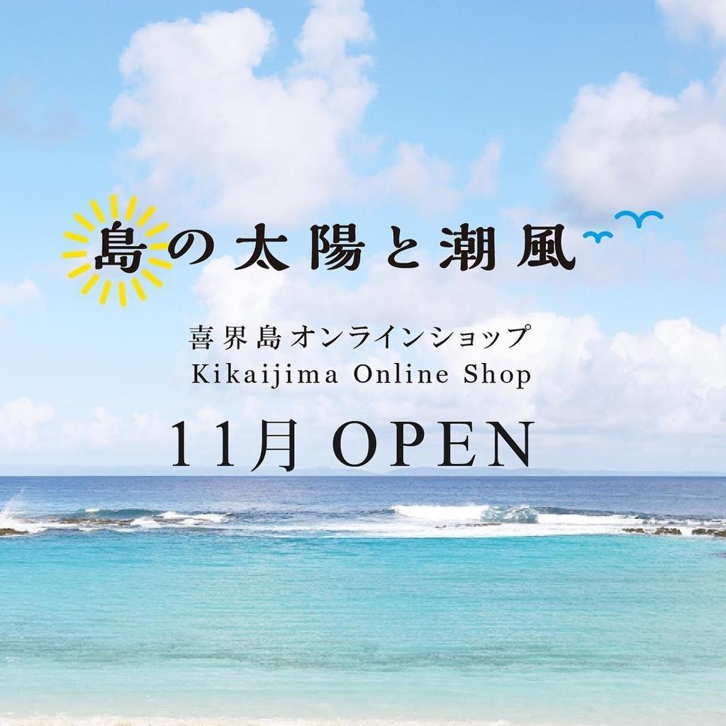 f:id:kikaijima_aojiru:20181030172700j:plain