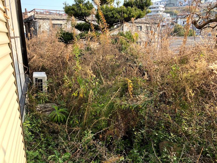 便利屋 | 何でもお助けサービス お庭の草むしり