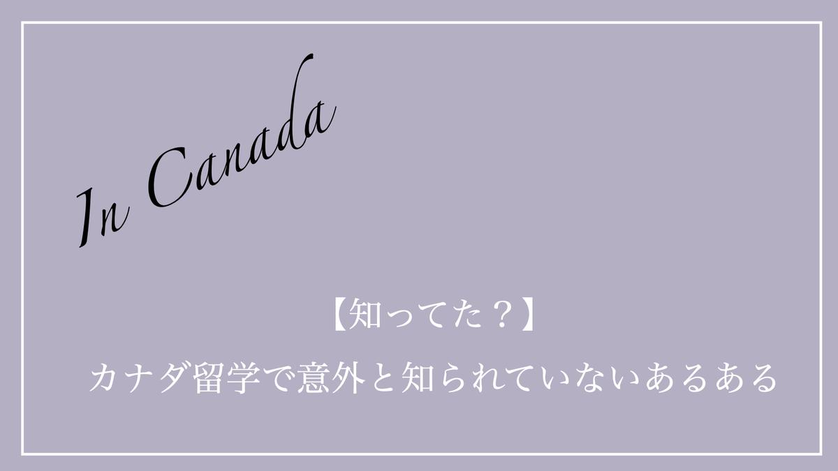 f:id:kiki_mofumofu:20200622080307j:plain
