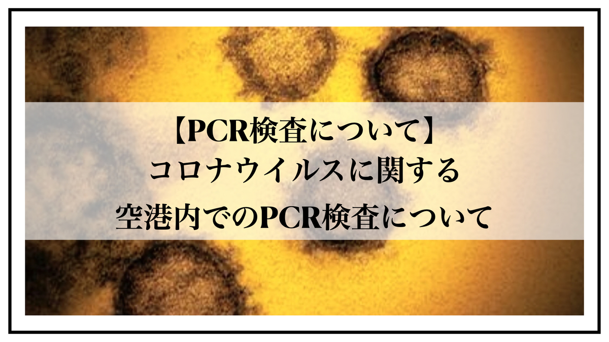 f:id:kiki_mofumofu:20200629181238j:plain