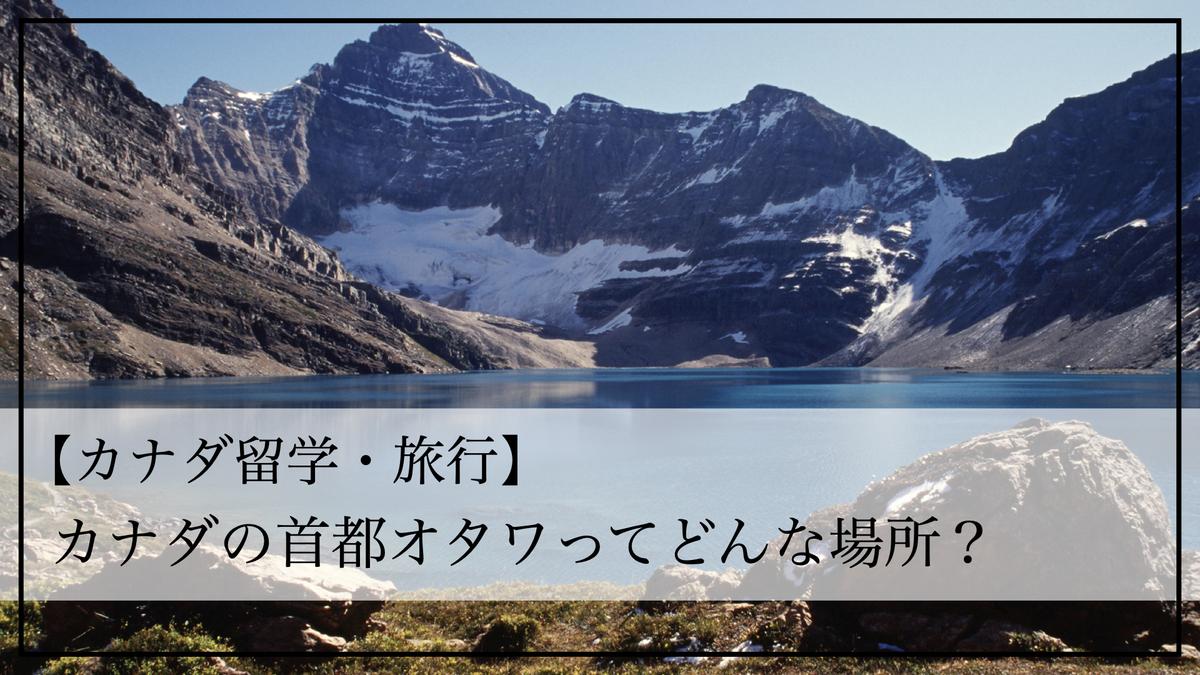 f:id:kiki_mofumofu:20200714155008j:plain