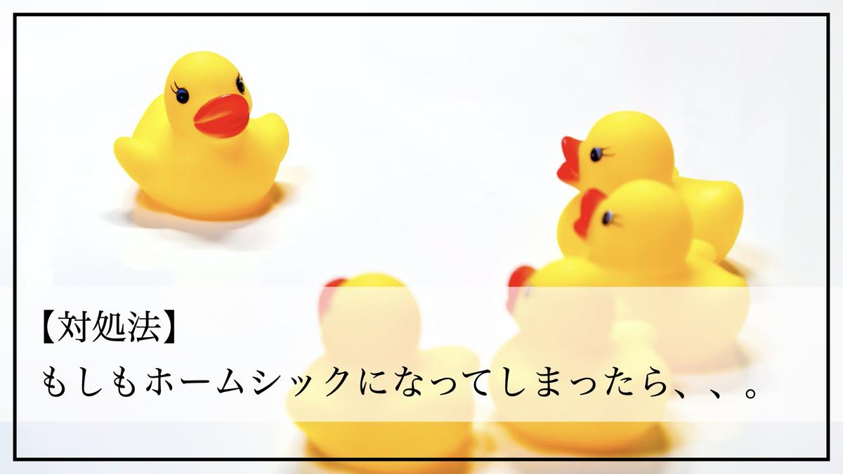 f:id:kiki_mofumofu:20200801163157j:plain