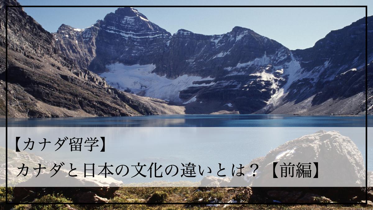 f:id:kiki_mofumofu:20200805143934j:plain