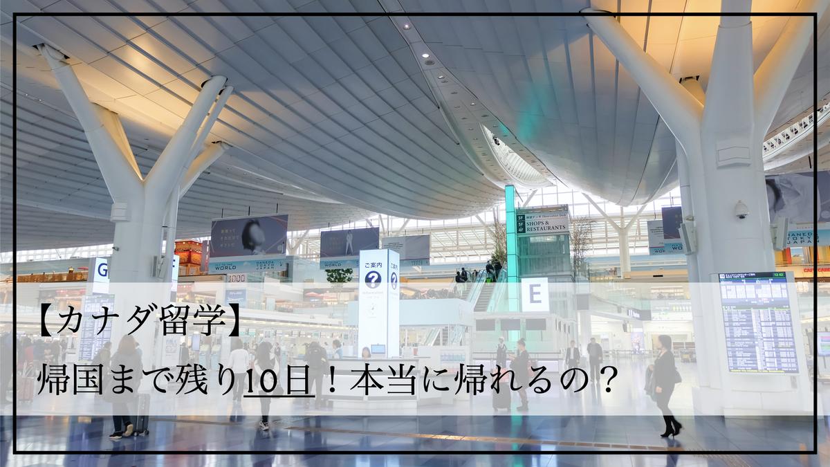 f:id:kiki_mofumofu:20200809131550j:plain