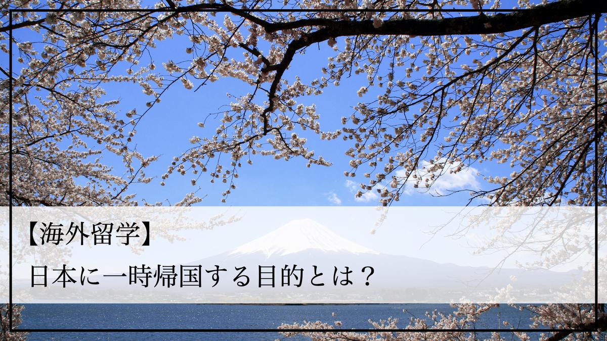 f:id:kiki_mofumofu:20200813143338j:plain