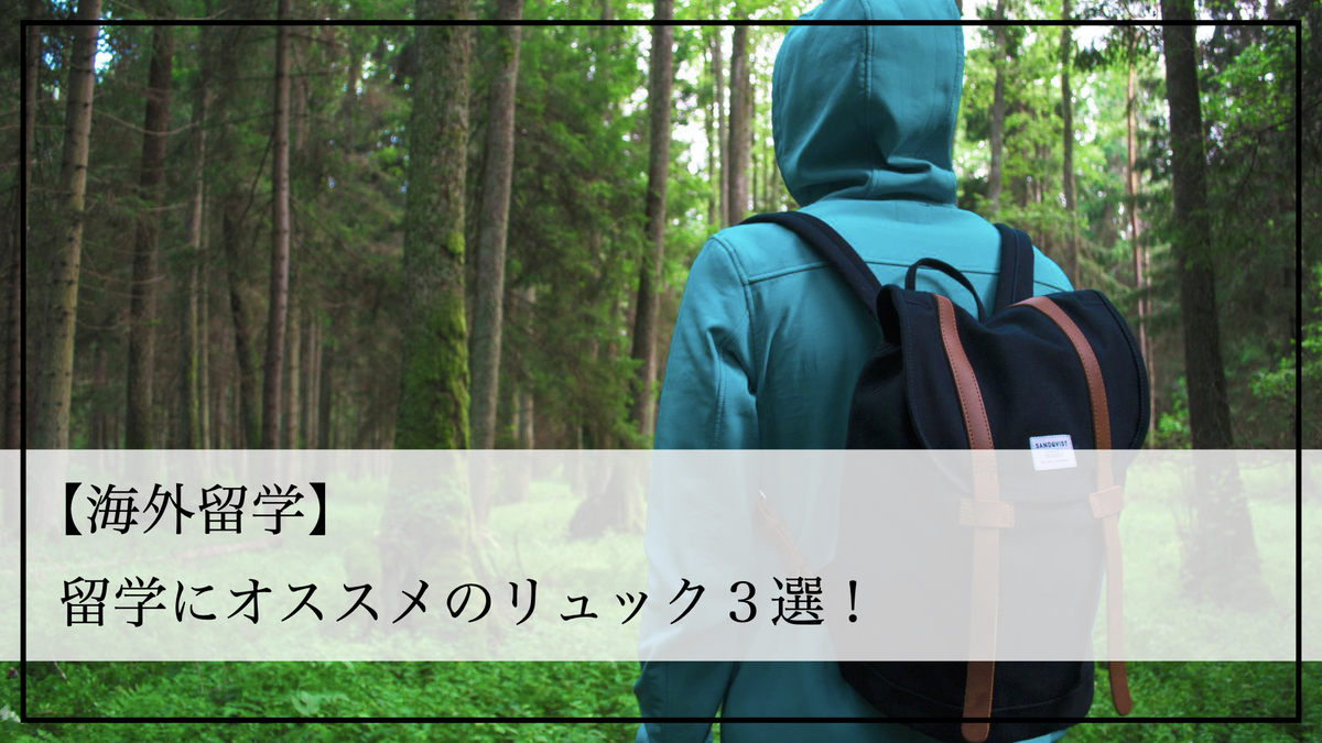 f:id:kiki_mofumofu:20200815190759j:plain