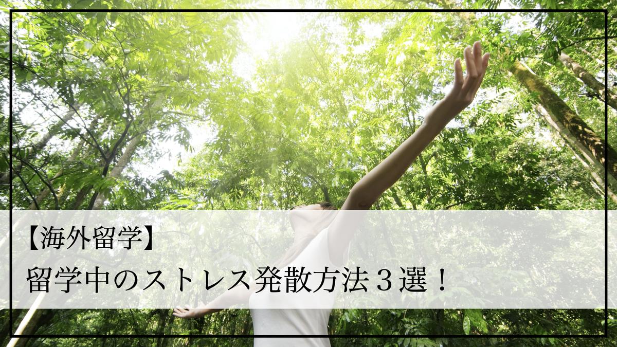 f:id:kiki_mofumofu:20200904161820j:plain