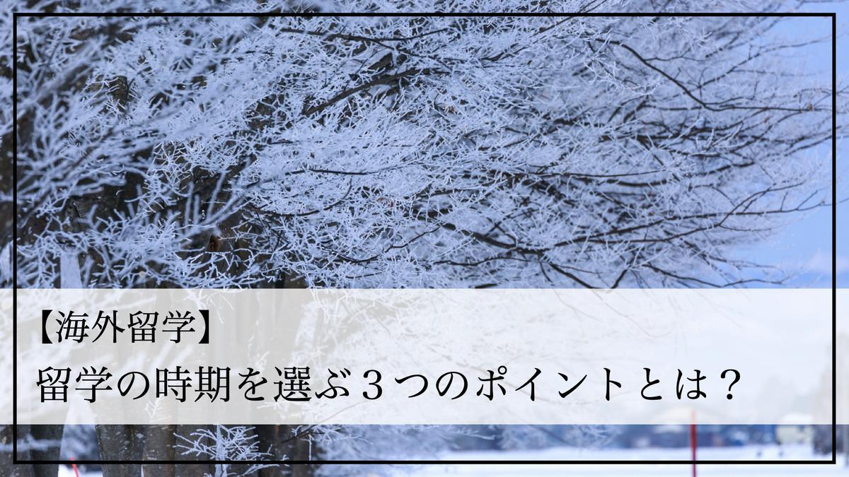 f:id:kiki_mofumofu:20200907172925j:plain