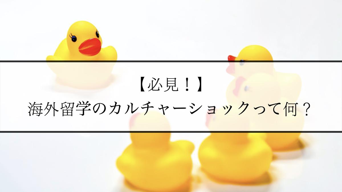 f:id:kiki_mofumofu:20201107163248j:plain