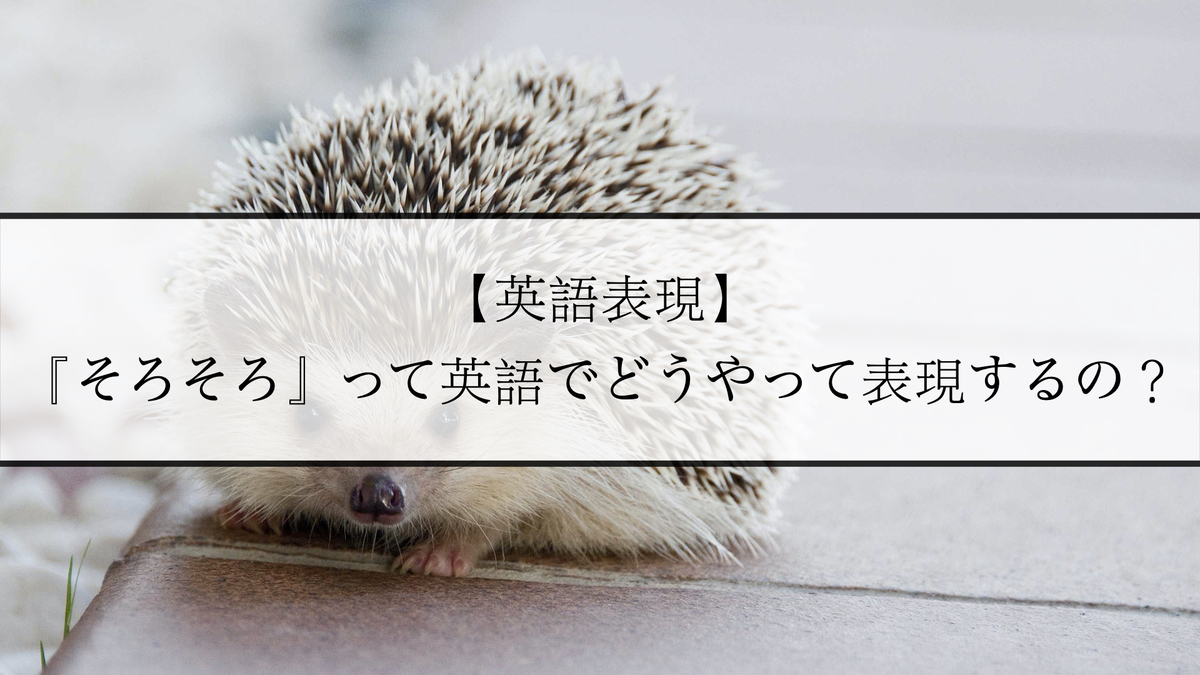 f:id:kiki_mofumofu:20201129070328j:plain