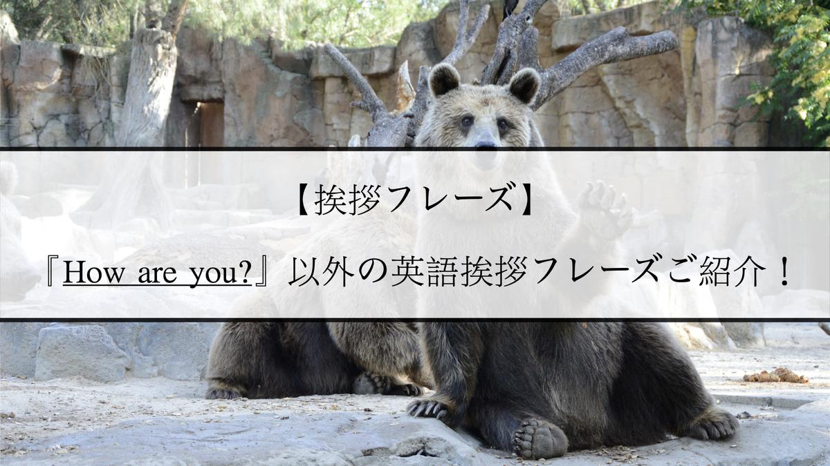 f:id:kiki_mofumofu:20201218085038j:plain