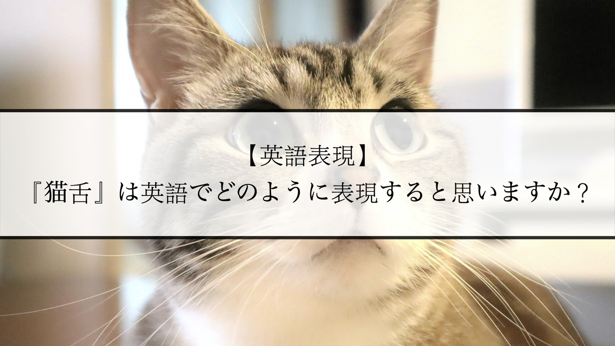 f:id:kiki_mofumofu:20201227094436j:plain