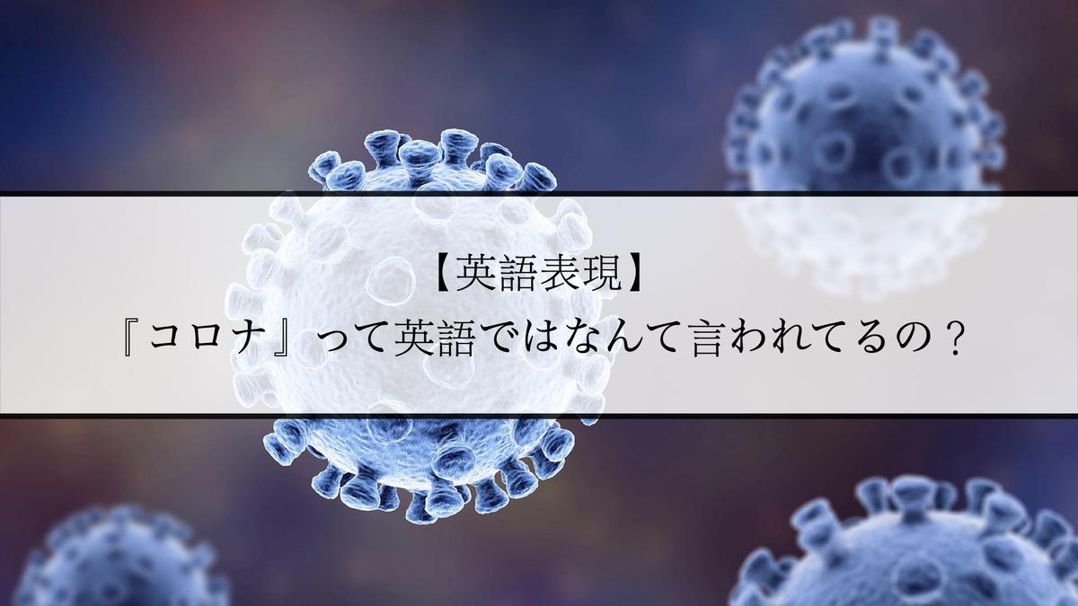 f:id:kiki_mofumofu:20210203085827j:plain