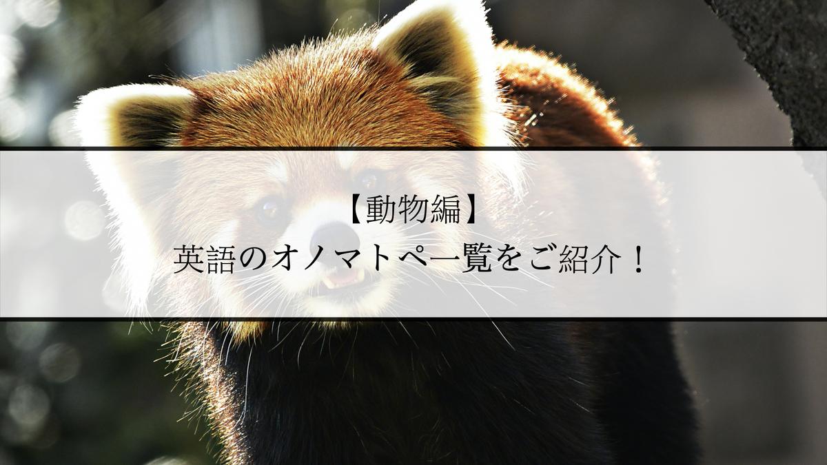 f:id:kiki_mofumofu:20210205124020j:plain
