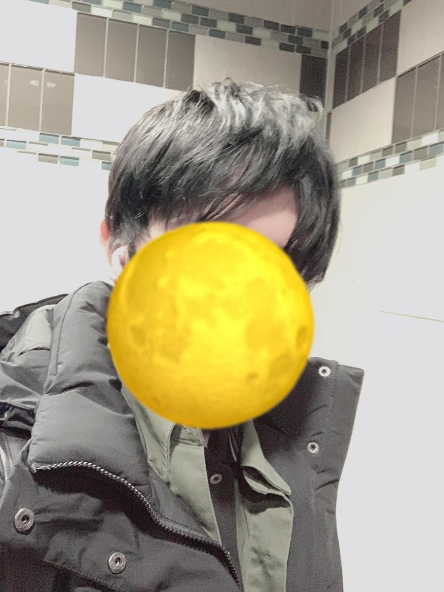 f:id:kiki_mofumofu:20210213161159j:plain