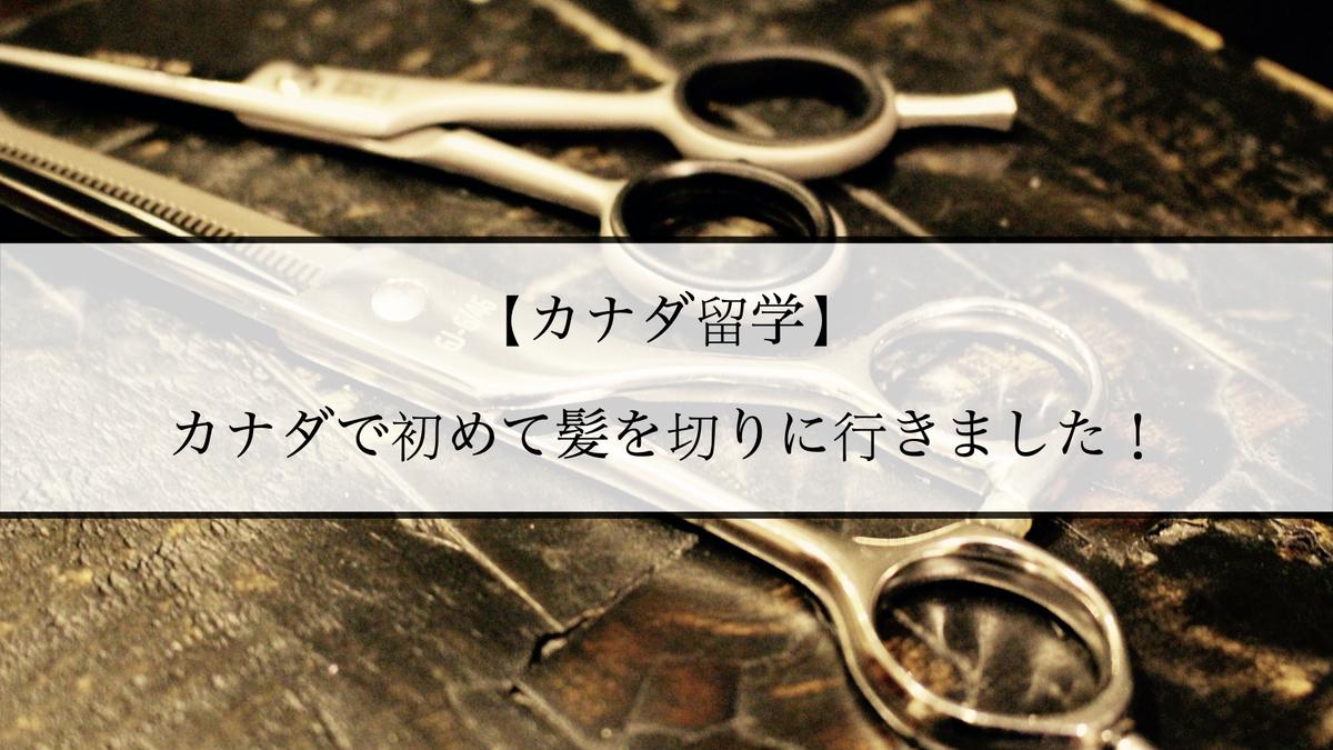 f:id:kiki_mofumofu:20210213173816j:plain