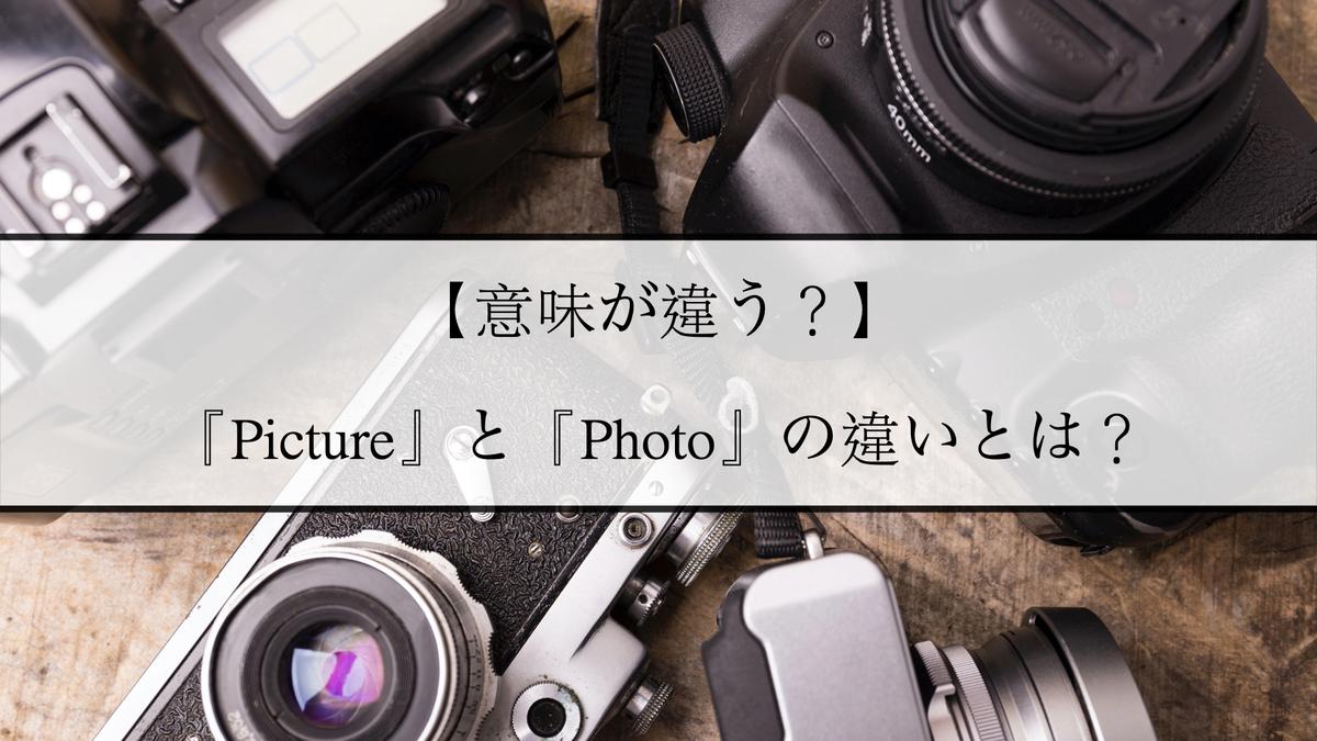 f:id:kiki_mofumofu:20210226084331j:plain