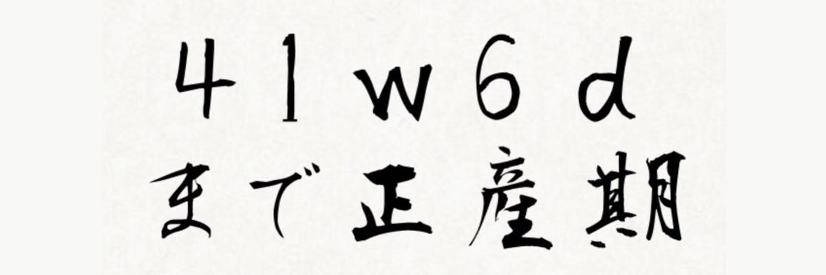 f:id:kikine888:20200820215816j:plain