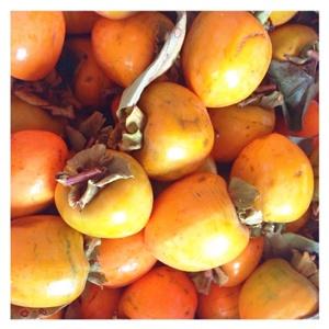 干し柿 作り方 柿