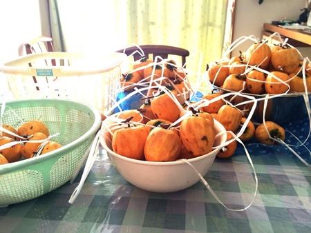 干し柿 作り方 量