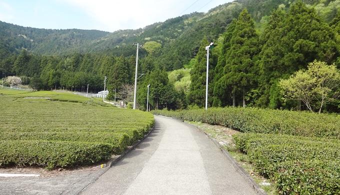 岐阜のマチュピチュ 天空の遊歩道へ行く道