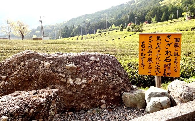 岐阜のマチュピチュ 天空の遊歩道へ行く途中にある国家君が代の歌詞にあるさざれ石