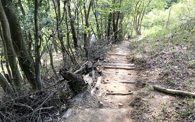 岐阜のマチュピチュ 天空の遊歩道の階段 傾斜がすごい