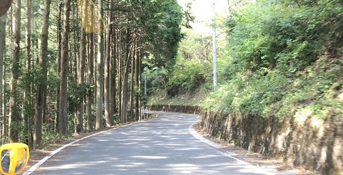 岐阜のマチュピチュ 天空の茶畑に向かう道