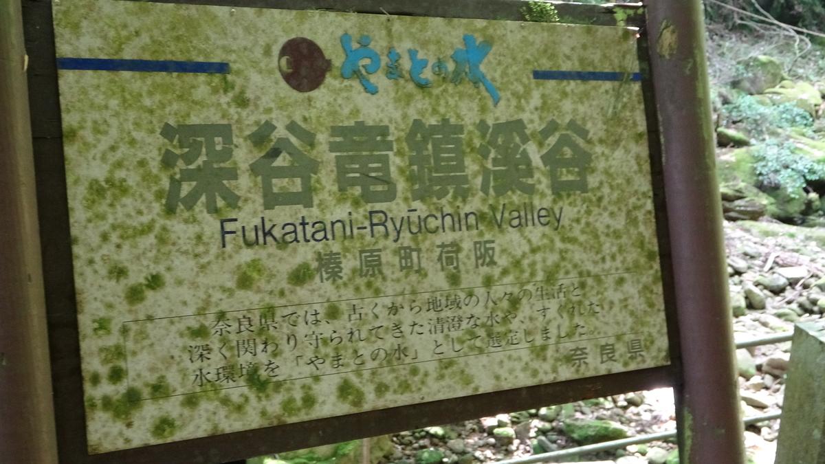 f:id:kikki-blog-ch2:20210608224502j:plain