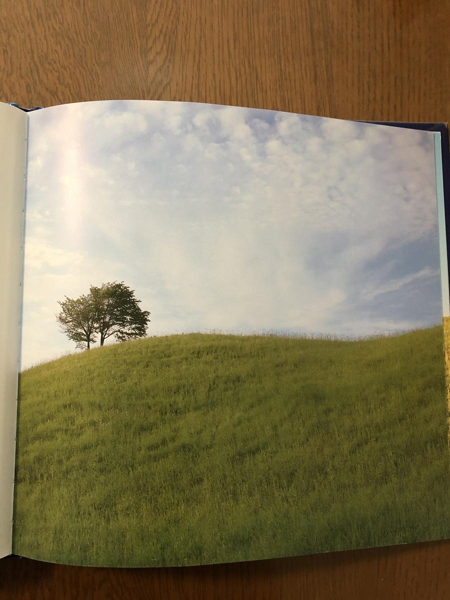 f:id:kiko_book:20210608113957j:plain