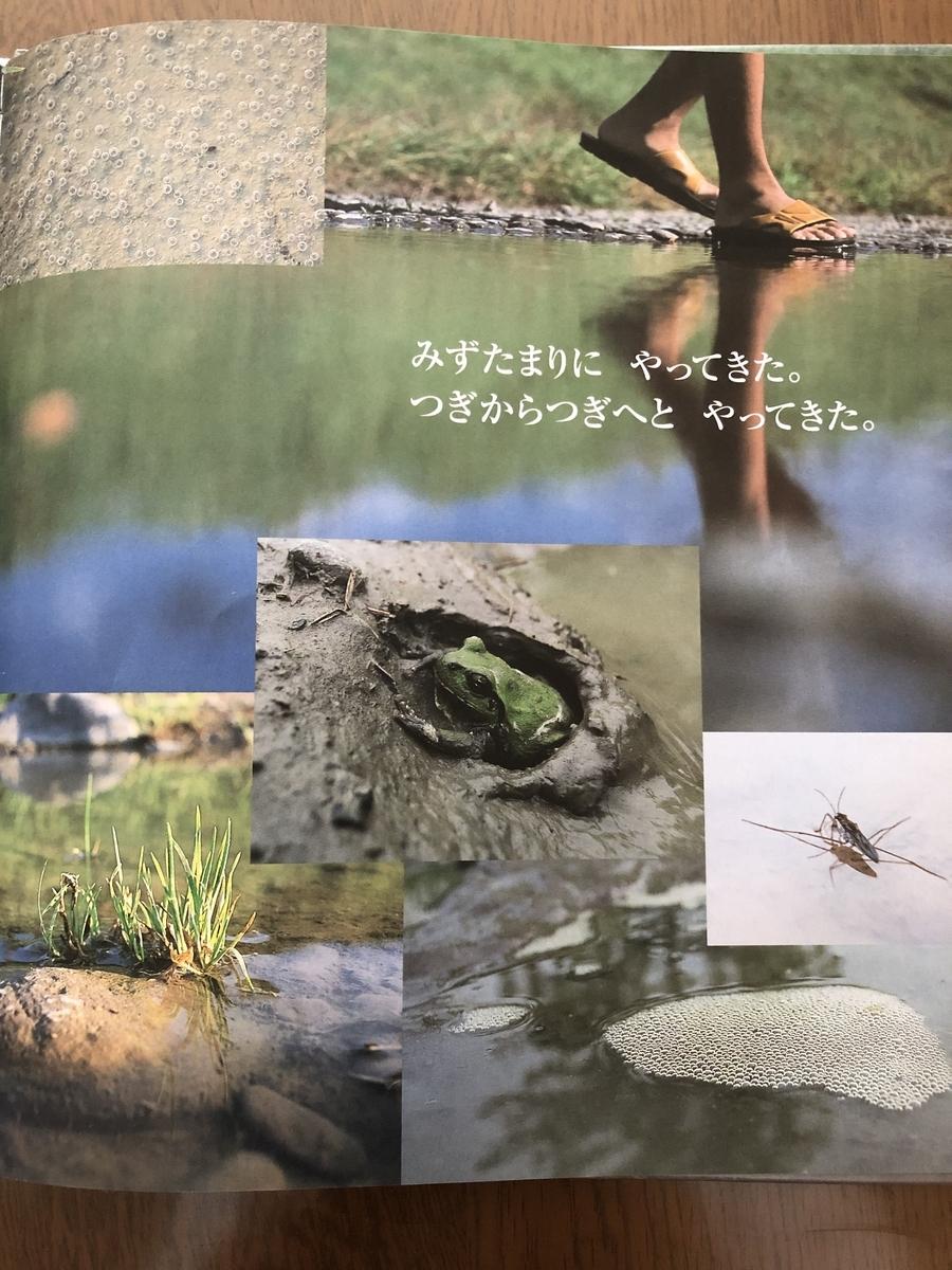 f:id:kiko_book:20210614123553j:plain