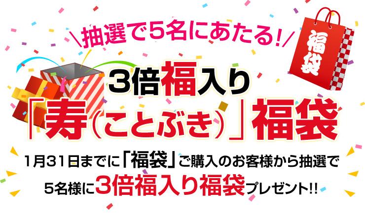 f:id:kiko_kamiya:20170122023114j:plain